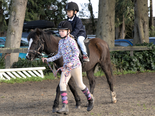 learn to ride child leading child on pony