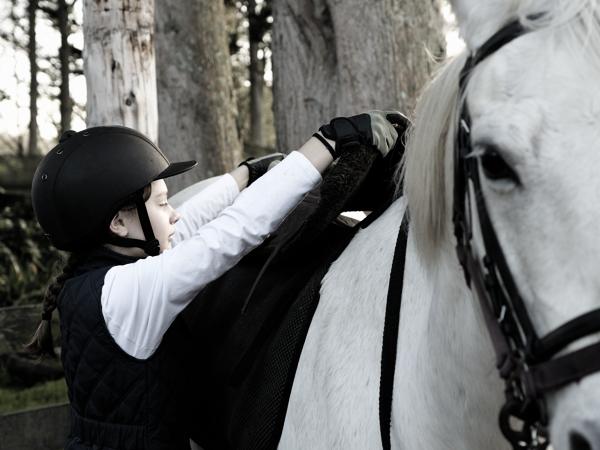 pony club getting ready